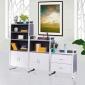 天时家具组合高低展示文件柜